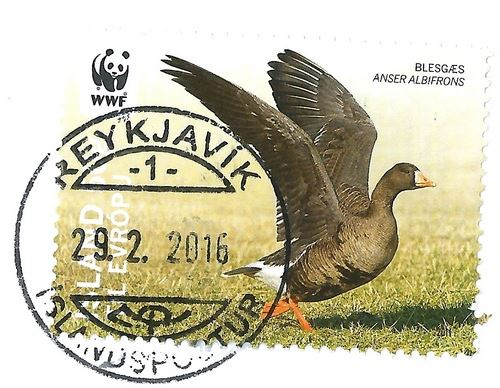Iceland stamp postmark