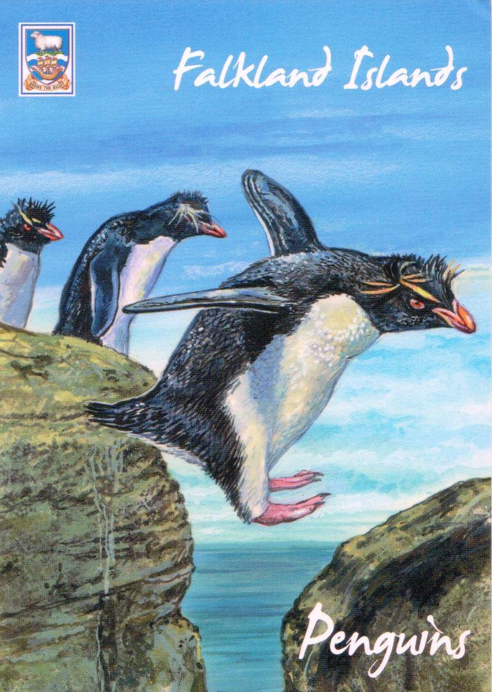 Falkland Islands postcard