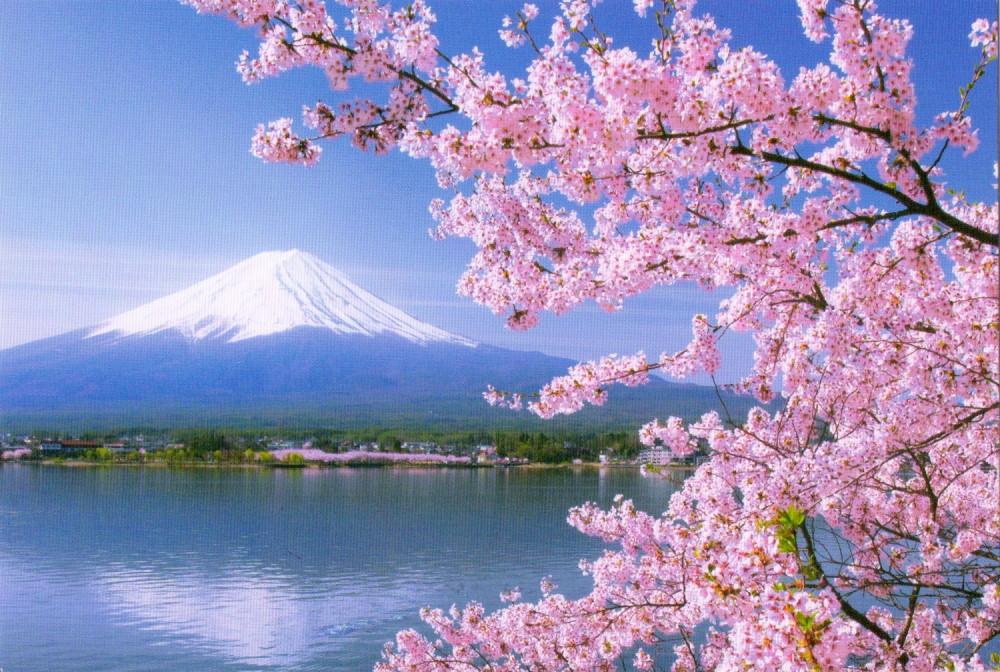Japan Mt Fuji